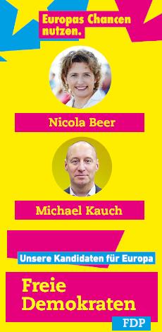 FDP Europawahl 2019 AR