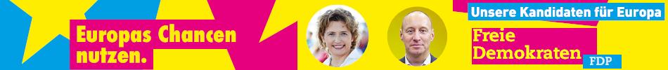 FDP Europawahl 2019 SS