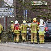 Tief Eberhard ließ ein Baum am Amtsgericht Herne-Wanne umstürzen.