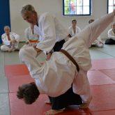 Extraschicht 2015- Flottmannhallen, Aikido-Vorführung.