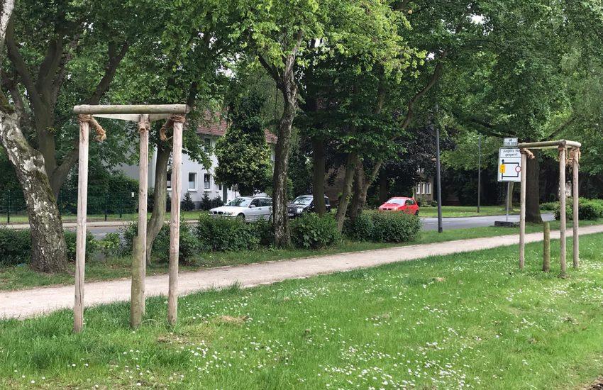 Abgesägte Bäume an der Von-Waldthausen-Straße.