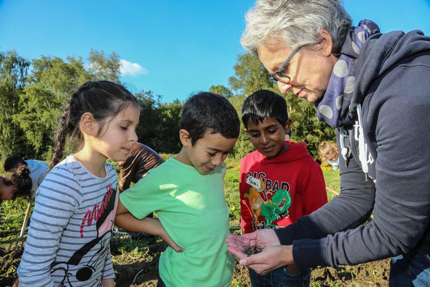 (foto nur für dreizeit ) dreizeit-TeilnehmerInnen bei Aktivitäten im Themenfeld Landwirtschaft.