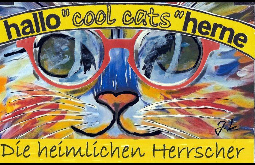 Samtpfote, Mietze, Stubentiger oder frei lebende Katzen - der 8. August ist ihr Tag.