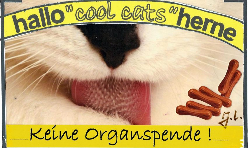 Cool cats zur Organspende.