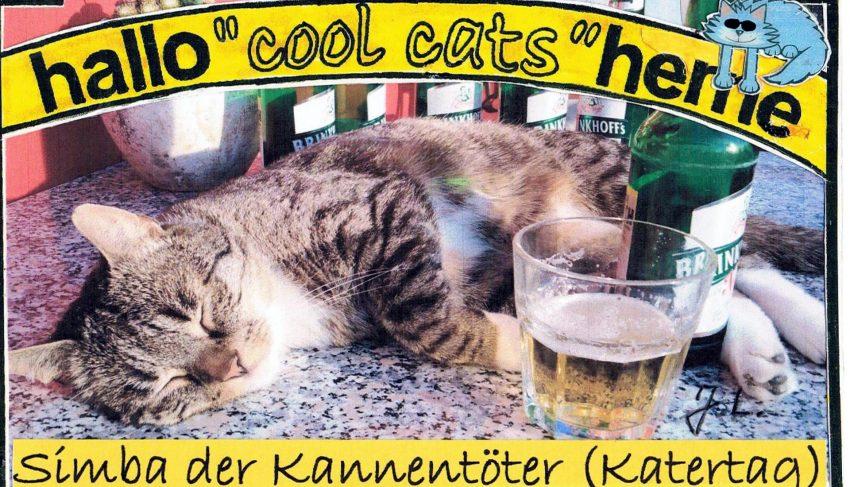 Der Kunst(v)kater Simba hat sich mit den Cool Cats getroffen.