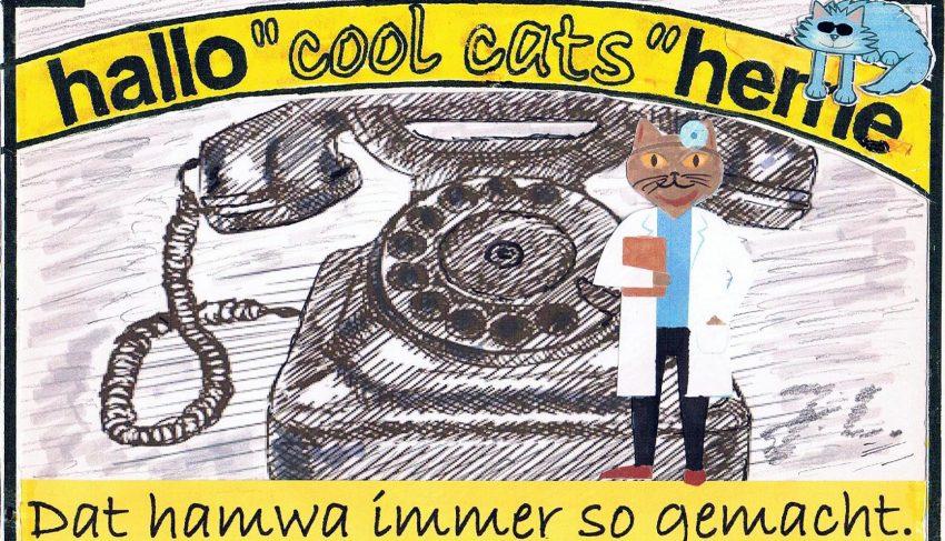 Die Cool Cats haben eine Plan: Externe Call-Center für Arztpraxen.
