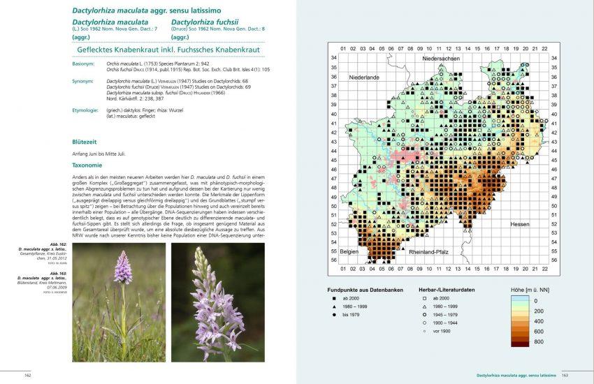 Blick in den neuen Orchideen-Atlas.