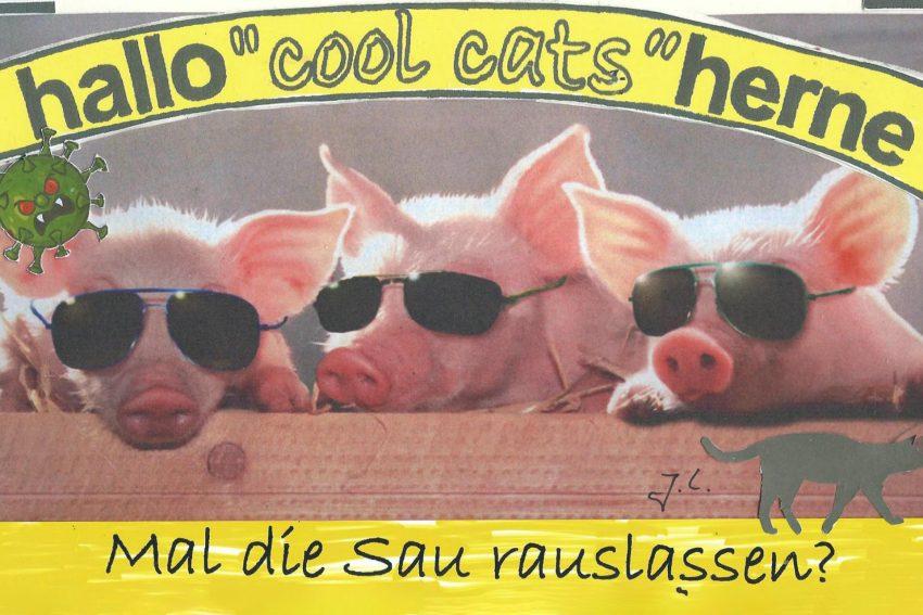 Die Cool Cats sind dabei - sie lassen die Sau raus.