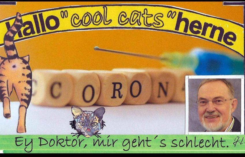 Viren oder Bakterien - die halloherne-Cool-Cats wollen endlich Bescheid wissen.
