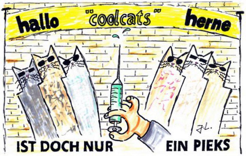 Die halloherne cool cats beim Impfen.