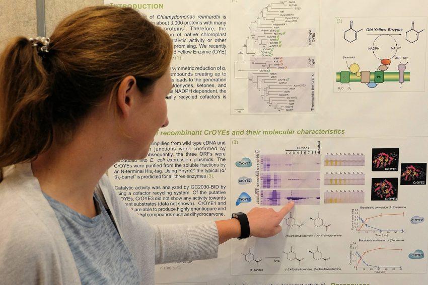 Algenforschung In Washington Halloherne Lokal Aktuell Online