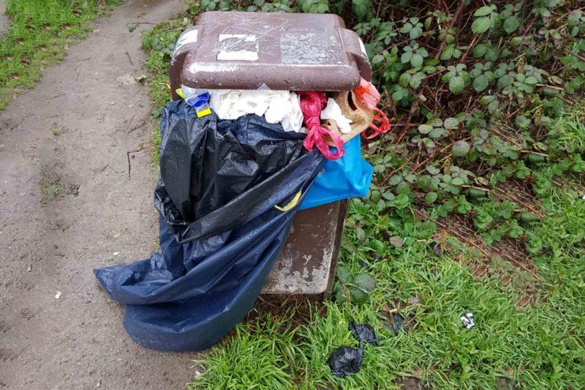 halloherne-Leser - Lothar Schulz - schickte uns dieses 'Müllfoto' aus dem Constantiner Wald.