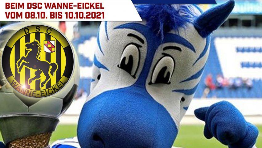 Der MSV-Duisburg kommt mit seinem Fußballcamp nach Herne.