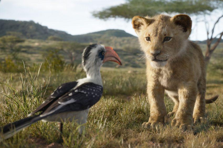 König der Löwen: Zazu und Simba.
