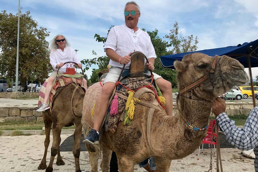 Hoch zu Kamel ...