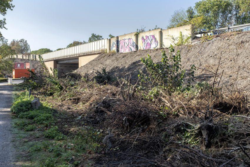 Rodungsarbeiten an der Autobahnbrücke Forellstraße - für den sechsspurigen Ausbau der A43.