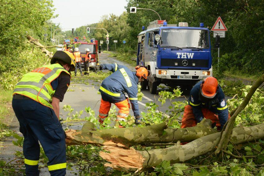 Sturm Ela von Pfingstmontag hat Spuren hinterlassen.