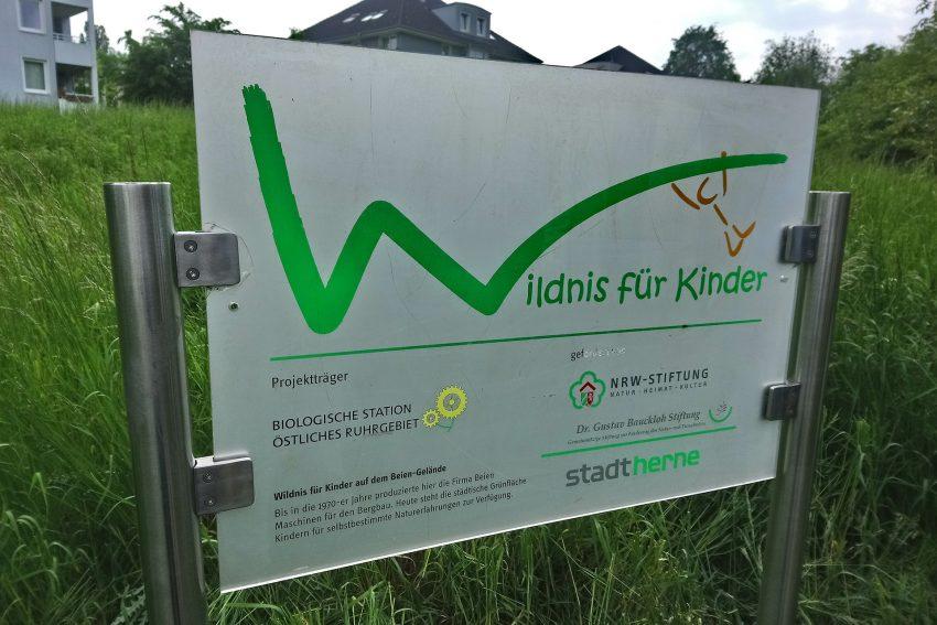 Wildnis für Kinder - Das Schild.