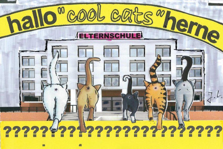 Hüh oder Hott - die coolcats fragen sich: