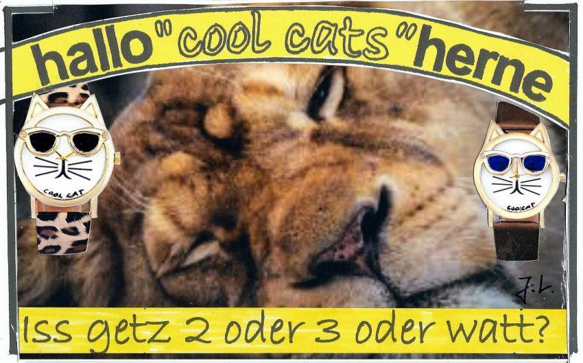 Die halloherne Cool Cats zur Zeitumstellung.