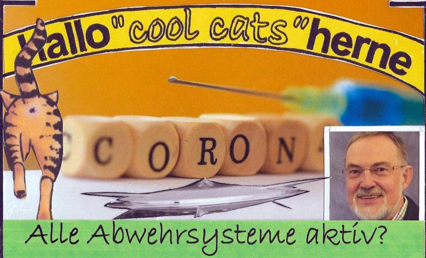 Die Cool Cats bringen ihre Abwehrkräfte in Stellung - das Immunsystem freut sich.