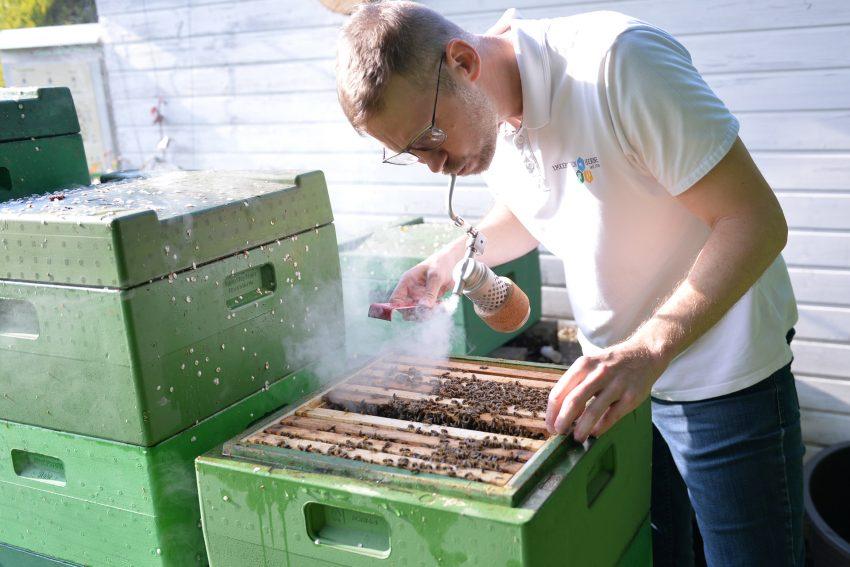 Tobias Büch, der erste Vorsitzende des Imkerverein Herne, mit dem Smoker. Der Rauch stellt die Bienen ruhig und erleichtert dem Imker die Arbeit am Bienenvolk.