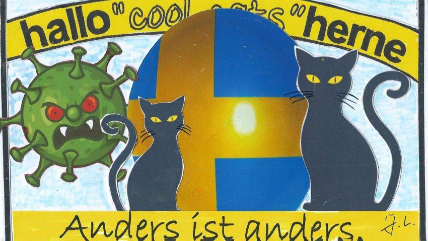Cool Cats Schweden.