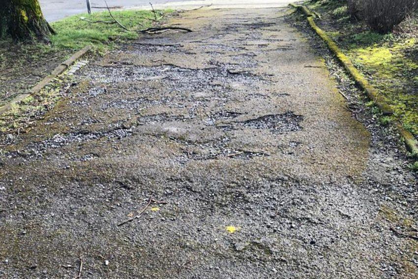 Der Gehweg an der Büchnerstraße hat im Winter sehr gelitten.