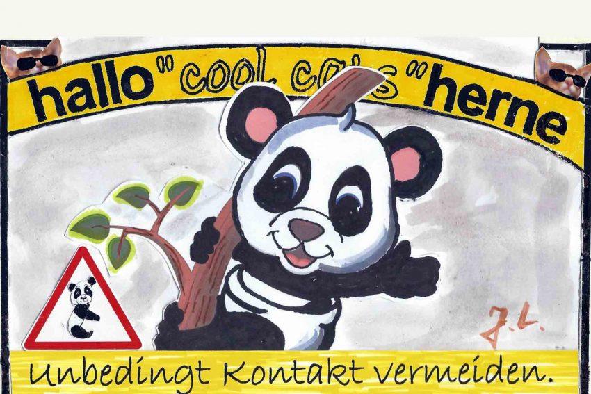Die Cool Cats raten: Unbedingt mit Panda-Bären unbedingt vermeiden.