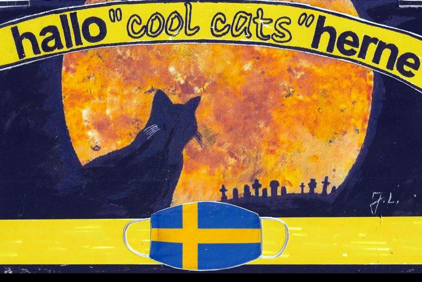 Die Cool Cats haben ausnahmsweise mal keine Worte.