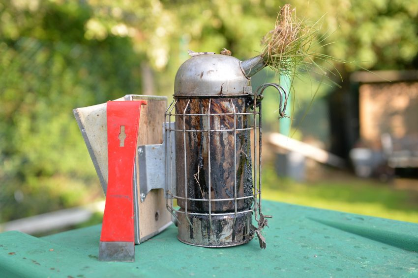 Der Rauch aus dem Smoker stellt die Bienen ruhig und erleichtert dem Imker die Arbeit am Bienenvolk.