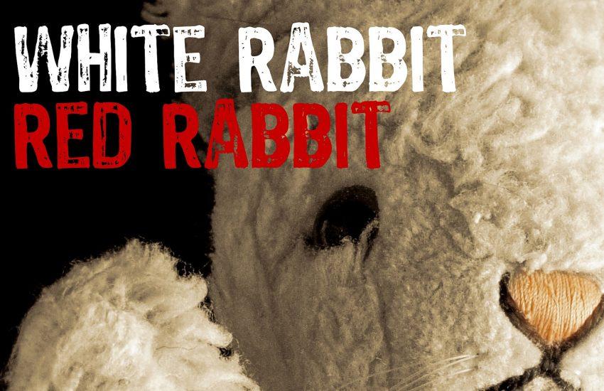'White Rabbit Red Rabbit' ist ein weltweites Theaterprojekt am Jahrestag des ersten Covid19-Lockdowns.