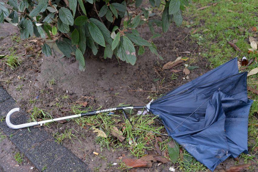 Der Regenschirm hat schon vor dem Sturmtief 'Friederike' die Flügel gestreckt.