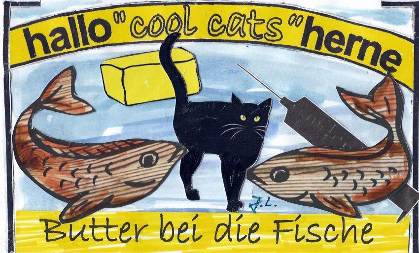 'Butter bei die Fische' fordern auch die cool cats.