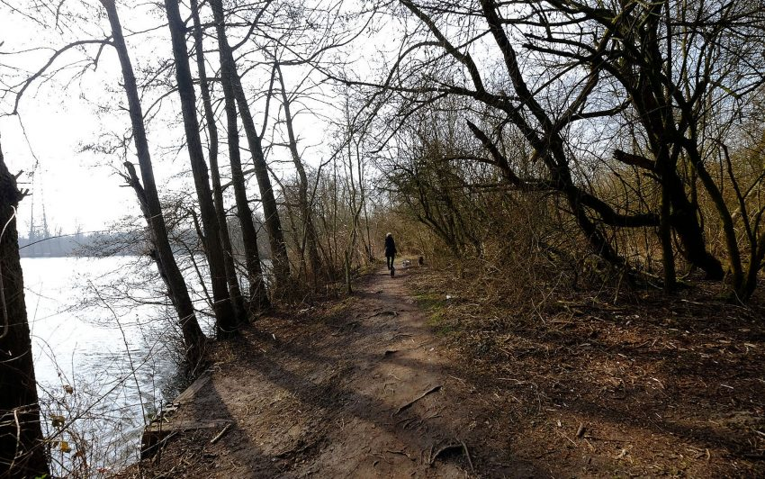 RVR hat neue Wege rund um den Ewaldsee angelegt.