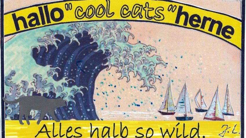 Die Segel Cool Cats vor der nächsten Welle?