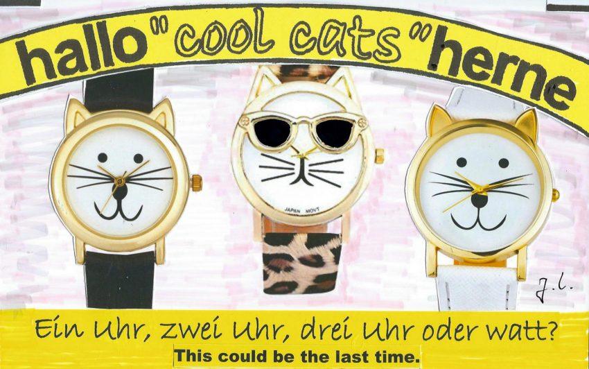 Die cool cats sind verwirrt.
