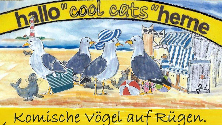 Komische Vögel auf Rügen, finden die cool cats.