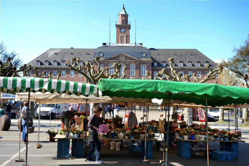 Wochenmarkt auf dem Rathaus-Vorplatz.