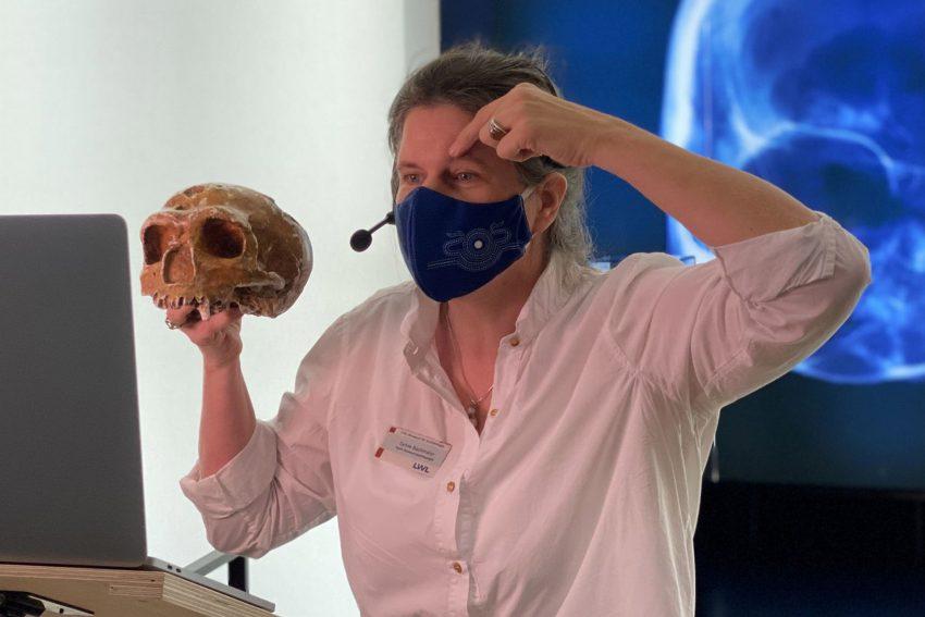 Museumspädagogin Bachmann zeigt einen 40.000 Jahre alten Schädel ganz nah.