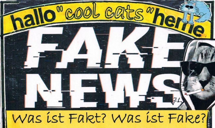 Jan Zweyer liest aus seinem neuen Buch 'Fake News'. Auch die cool cats sind gespannt.