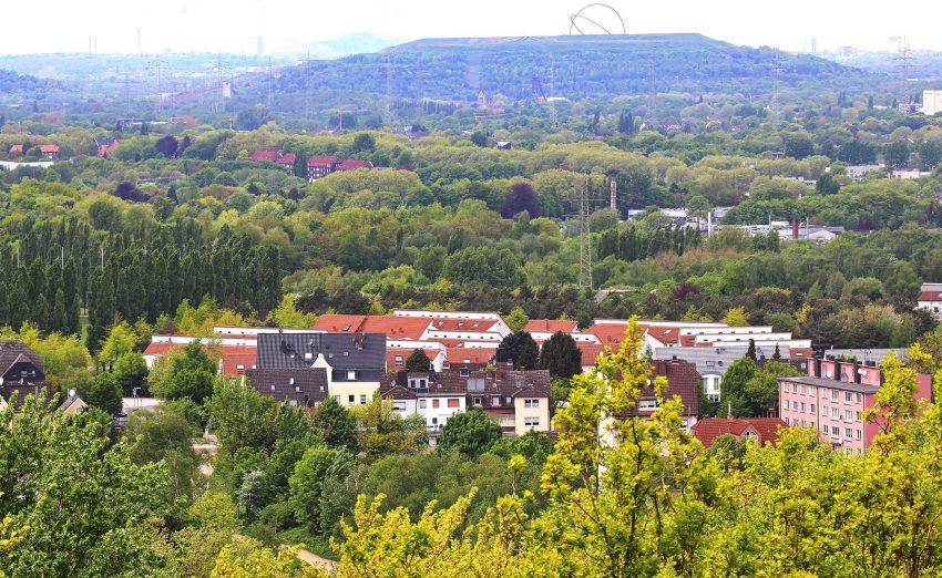 Lokal-geschichtlich Interessierte am Kaiser-Wilhelm-Turm.