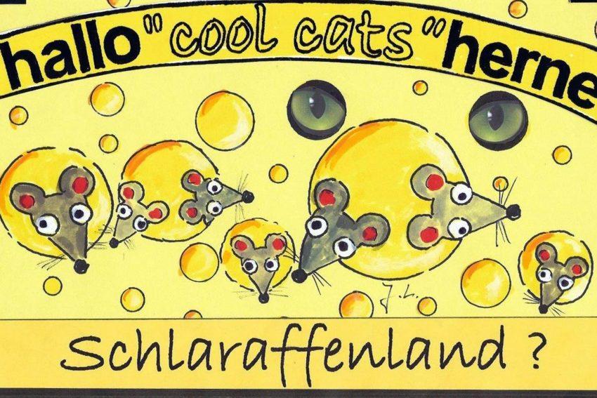 Coolcats im Schlaraffenland.