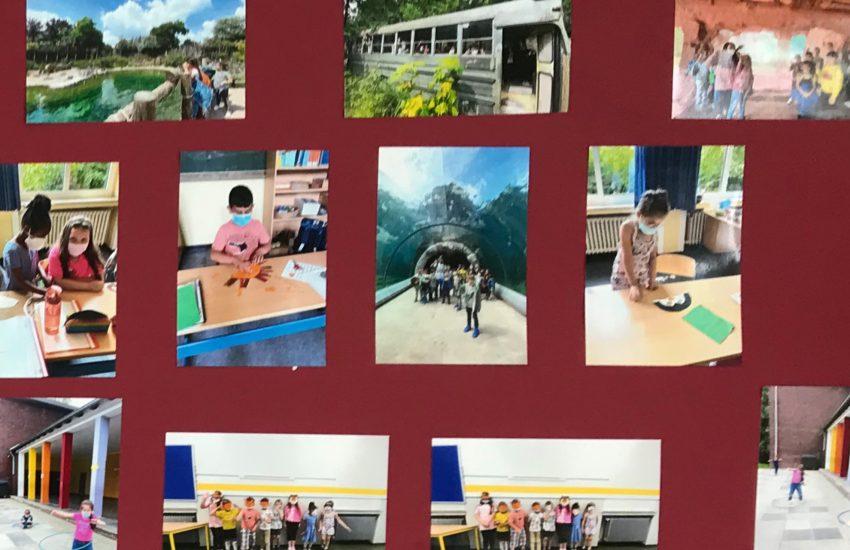 An Foto-Wänden haben die Schüler ihre Erlebnisse festgehalten.