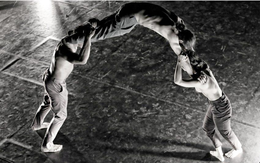 Tanz und Neuer Zirkus ...