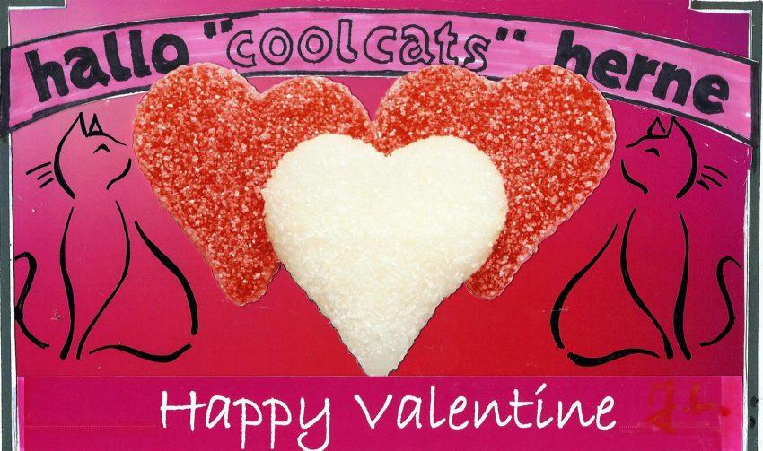 Cool Cats feiern die Valentine.